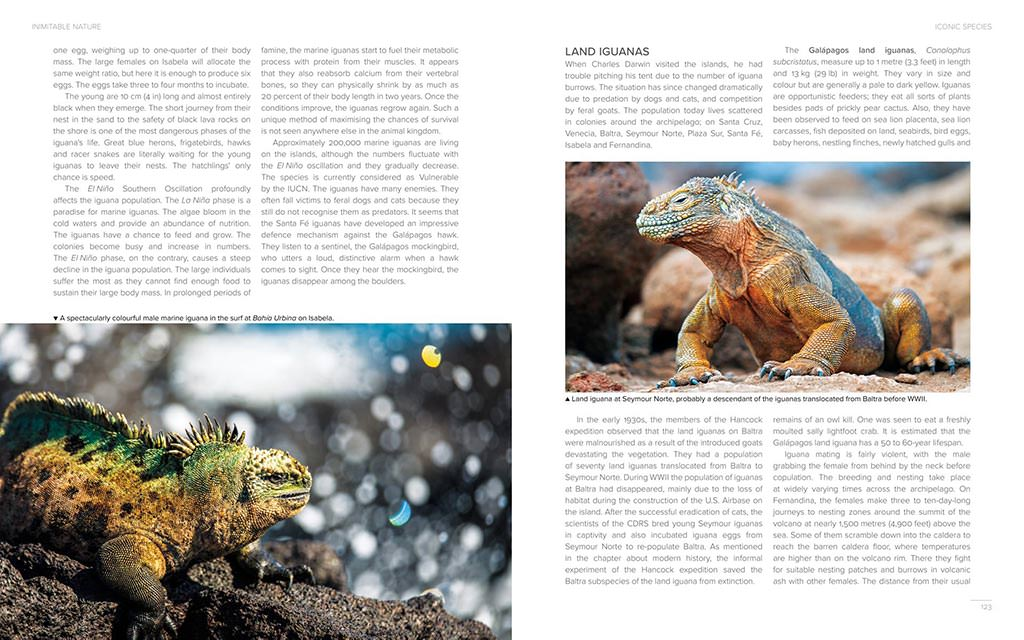 Galapagos Islands Travel Guide by Josef Litt