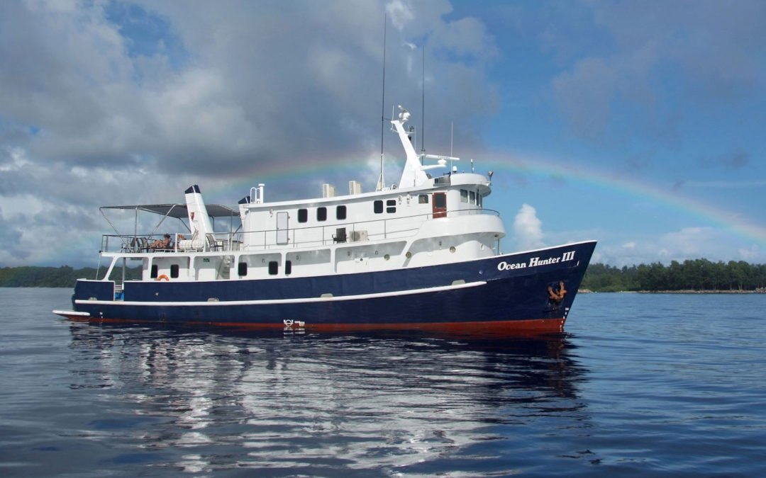 Opening for Two: Palau Diving Expedition aboard Ocean Hunter III